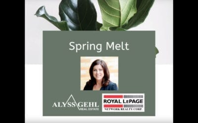 Let's Talk About Spring Melt